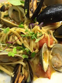 Clam & Mussel udon noodle special