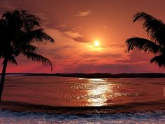 Red nature Photos | red paradise, beach, nature, scenery, tropical