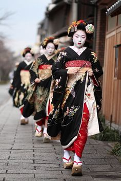 舞妓 ふく紘さん  Dressed in formal, black kimono maiko (apprentice geisha) from the Miyagawa-cho district of Kyoto, Japan visit tea houses and te. Cultures Du Monde, World Cultures, Japanese Kimono, Japanese Art, Japanese Style, Japanese Fashion, Furisode Kimono, Yukata, Memoirs Of A Geisha