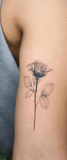 Feed Your Ink Addiction With 50 Of The Most Beautiful Rose Tattoo Designs For Men And Women - X-ray rose tattoo © tattoo artist Tricep Tattoos, Forarm Tattoos, Body Art Tattoos, Bicep Tattoo Women, Tattoos For Women Half Sleeve, Thigh Tattoo Men, Pretty Tattoos For Women, Small Tattoos For Guys, Simple Poppy Tattoo