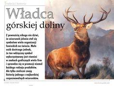 """I jeszcze jeden temat z jeleniem w roli głównej – tym razem chodzi o obraz Władca górskiej doliny pędzla Edwina Henry'ego Landseera. We wrześniowym wydaniu """"Łowca Polskiego"""" publikujemy historię najpopularniejszego wizerunku jelenia i jego twórcy.  Zapraszamy do lektury!"""
