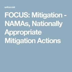 FOCUS: Mitigation - NAMAs, Nationally Appropriate Mitigation Actions