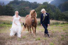 Julie & Søren. Bryllup 2015