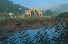 """Tintern Abbey ~ Monmouthshire, Wales. I want to go there and recite """"Tintern Abbey Lines"""""""