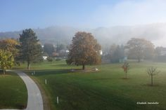 Herbst im Lavanttal! Golf Courses, Country Roads, Old Town, Vacations, Fall, Homes