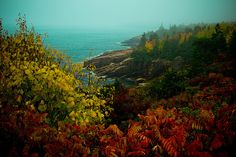 the coast, Acadia Maine