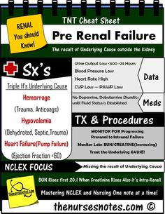 20:1 BUN Creatinine Ratio Pre Renal Failure Kidney Injury Creatinine Kidney…
