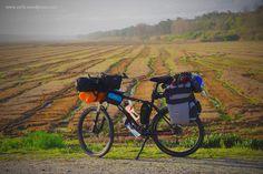 Arrozais na Comporta Motorcycle, Vehicles, Troy, The Journey, Viajes, Bike, Motorcycles, Car, Motorbikes