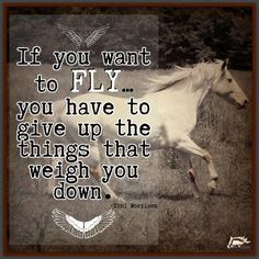 If you want to FLY....you have to give up the things that weigh you down.