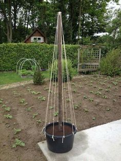 This looks like a way to grow lighter vining things (at least in that size and w. This looks like a way to grow lighter vining things (at least in that size and weight of pot, it'll be topheavy in wind). Vegetable Garden Design, Veg Garden, Garden Trellis, Garden Planters, Garden Beds, Pea Trellis, Balcony Garden, Pot Jardin, Diy Garden Decor