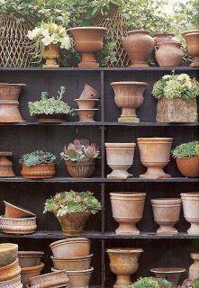 Collection of terracotta pots -- Victoria Pearson terracota Garden Urns, Garden Tools, Terrace Garden, Glass Garden, Garden Shop, Dream Garden, Unique Garden, Natural Garden, Terra Cotta