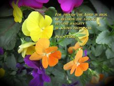 For though the Lord is high, he regards the lowly,     but the haughty he knows from afar. Psalm 138:6