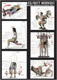 Personal trainer leg and butt workout
