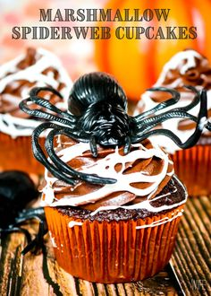 Make a spooky but tasty mess with these fun Marshmallow Spider Web Cupcakes! Homemade chocolate cupcakes and chocolate frosting get covered in creepy homemade marshmallow spiderwebs for a dessert that's perfect for Halloween! Homemade Chocolate Cupcakes, Homemade Marshmallows, Chocolate Frosting, Halloween Brownies, Halloween Snacks, Happy Halloween, Cupcake Frosting, Cupcake Cakes, Cupcake Recipes