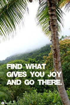Vacation and travel inspired quotes. Get out there and enjoy yourself.