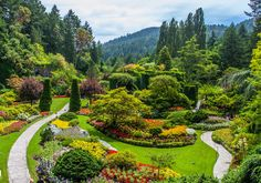 The Butchart Gardens is a group of colorful floral display gardens in Brentwood Bay, British Columbia, Canada, located near Victoria on Vancouver Island. An ...