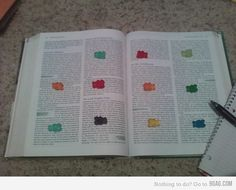 Ha ha ha... studying incentive, when you reach a gummybear, you get to eat it.