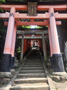 Hunter Boots, Kyoto, Rubber Rain Boots, Fashion, Moda, Fashion Styles, Fashion Illustrations, Hunting Boots
