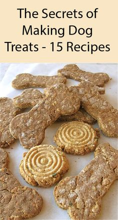 Dog Training Chewing Your Dog Will Love These Best Of Breed Dog Biscuits. Training Chewing Your Dog Will Love These Best Of Breed Dog Biscuits. Dog Cookie Recipes, Easy Dog Treat Recipes, Homemade Dog Cookies, Dog Biscuit Recipes, Homemade Dog Food, Healthy Dog Treats, Dog Food Recipes, Doggie Treats, Homemade Biscuits