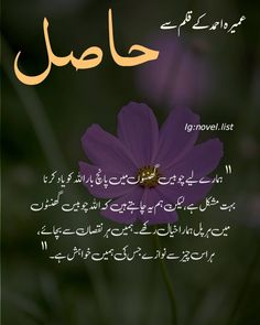 Ali Quotes, Urdu Quotes, Wisdom Quotes, Quotations, Best Islamic Quotes, Islamic Phrases, Islamic Inspirational Quotes, Feelings Words, Quotes Deep Feelings