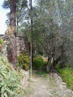 Exteriores de uno de los espacios de Convivencias-Taller: Las Javerianas.9