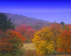Fall in Pennsylvania.