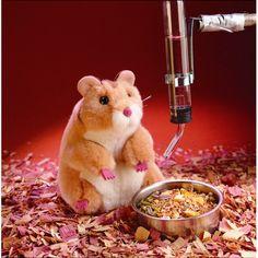 ¡Ni jaula ni pienso! Este hamster marioneta hará la tardes de tus niños mucho más divertidas :) #juguetes #kanikas #folkmanis