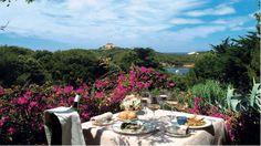 Restaurant L'Olivier, Porquerolles #France #France_Hotels #Europe #Europe_Hotels #DirectRooms http://directrooms.com/france/hotels/hyeres-hotels/porquerolles-price1.htm