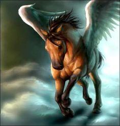 The Bay Pegasus