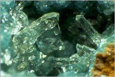 Senegalite [Al2(PO4)(OH)3 (H2O)]. Faleme River, Senegal