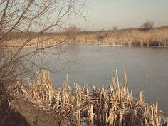 Winter Photos at Mediesu Lake . Winter Photos, Winter Pictures