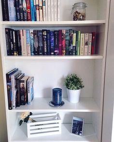 repisas con libros
