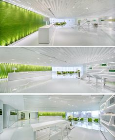 Neo Derm Medical Aesthetic Center, Hong Kong_Dynamic Lime Color for Neo Derm Skin Care Center Interior_1
