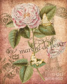 French Flower Market Greeting Card by Traci Vanover