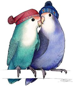Peach-Faced Lovebirds in Matching Bobble Hats  //  Alice Tams