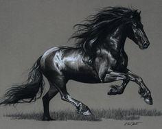 Graphite drawing of Friesian Pretty Horses, Horse Love, Beautiful Horses, Animals Beautiful, Painted Horses, Horse Drawings, Animal Drawings, Horse Wallpaper, Horse Artwork