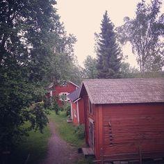 Turkansaari juhannuksena. (paikassa Turkansaari, Oulu)