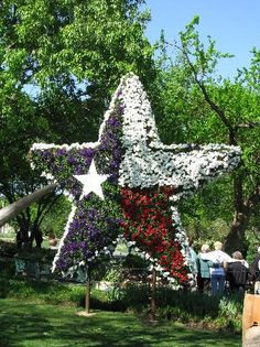 12 Best Travel Dallas Texas Ideas Dallas Trip Advisor Texas