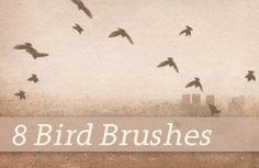 Freebie Friday: 8 Flying Bird Brushes - BittBox http://www.bittbox.com/freebies/freebie-friday-8-flying-bird-brushes