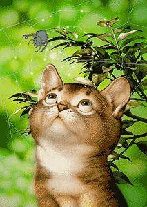 Kuvat | Animaatiokuvia | Kissat