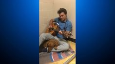 #Watch: Vet Sings To Nervous Dog Before Surgery - CBS Local: CBS Local Watch: Vet Sings To Nervous Dog Before Surgery CBS Local LAKEWOOD,…