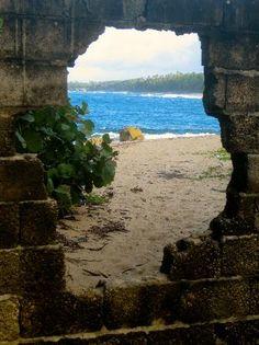Puerto Rico | - Imágenes de Manati