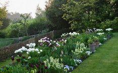 Need to start planning.....Ben Pentreath's tulip garden   Gardenista
