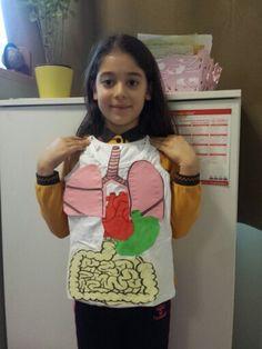 2.sinif organlarımız