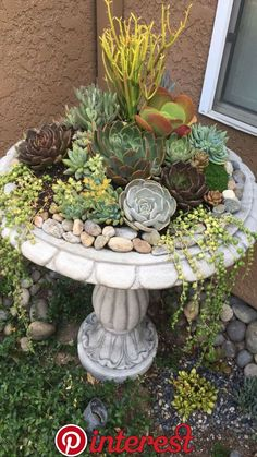 Mediterranean Garden Design 35 simple and small front yard landscaping ideas 10 – small front yard ideas Succulent Gardening, Garden Planters, Succulents Garden, Flowers Garden, Bird Bath Planter, Succulent Plants, Jade Plants, Succulent Garden Ideas, Balcony Garden