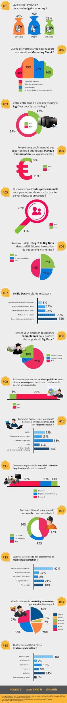 IT Social - Les enjeux du marketing des entreprises IT (infographie CMIT)