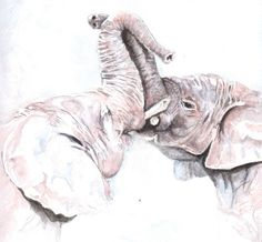Original watercolour of elephants by Ally Tate £75.00