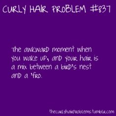 Curly Hair Problem: The awkward moment when you wake up, and your hair is a mix between a bird's nest and a 'fro. Curly Hair Jokes, Crazy Curly Hair, Curly Hair Styles, Natural Hair Styles, Curly Girl Problems, Hair Facts, Hair Issues, Hair Quotes, Hair Humor