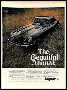 Classic Car News Pics And Videos From Around The World Jaguar Sport, Jaguar Type, Retro Cars, Vintage Cars, Vintage Auto, Prestige Car, Old Lorries, British Sports Cars, Automotive Photography