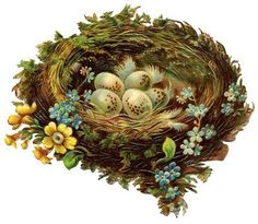Chromo nid printemps, Graphics Fairy